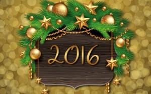 an-nou-fericit-2016-la-munti-ani-2016