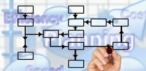 structura organizatoricaa